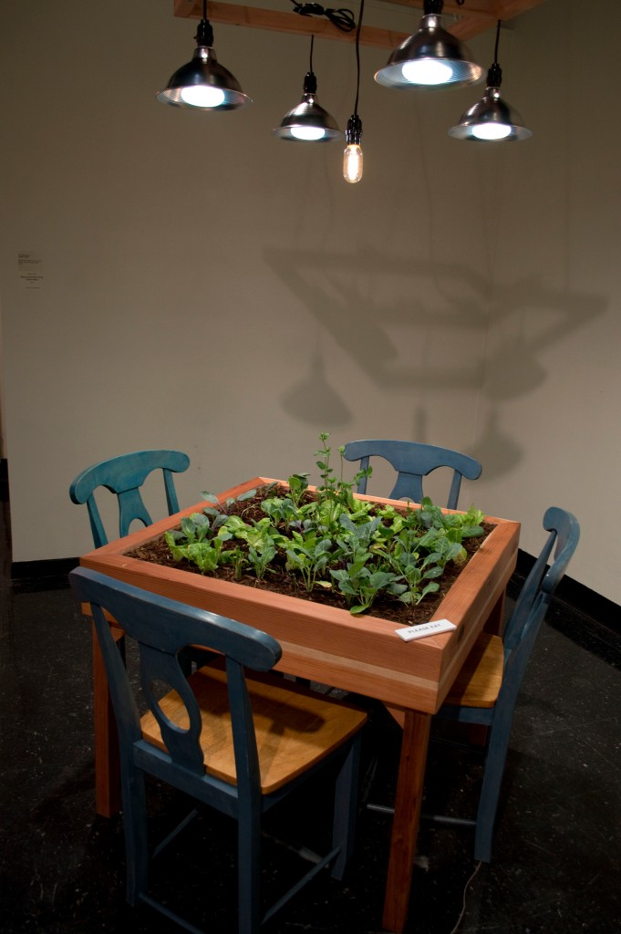 The Garden Table is an interactive piece project where folks are welcomed to come up and eat straight from the table. The hope is to introduce gardening to individuals who may have not had much exposure and to start conversation.