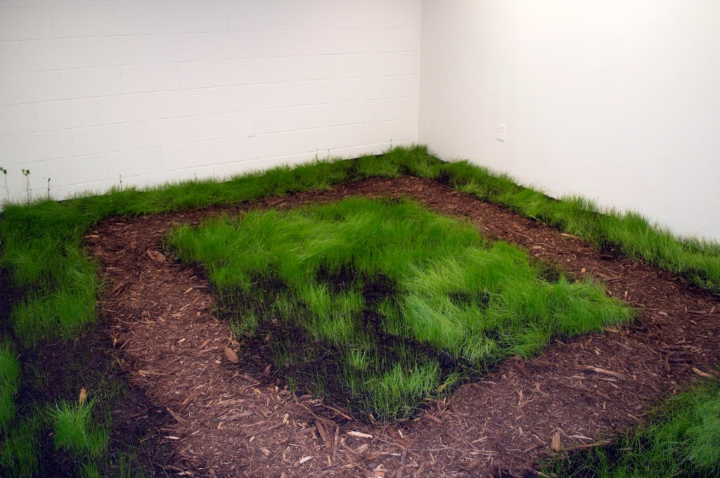 Complete with a mulched walkway, the Indoor Pasture is a fanciful space that is beautiful in it's green lush grass, but a painful reminder of environments that are inappropriate for growth. By seeing a space that both entrances and disgusts it calls us to think more carefully of how we use our own spaces and resources.