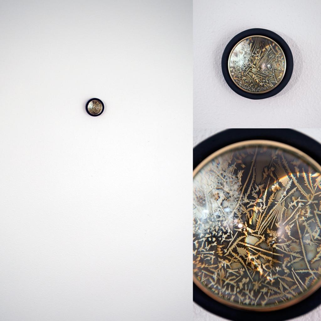 "Tergus Skopeîn LWS1309.01, Agar, Bacteria, Wood, Magnifying Glass, 2.5"" x 2.5"", 2014"